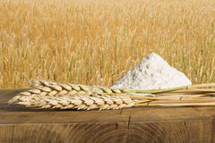 Bread, flour and wheat cereal crops. Royalty Free Stock Images