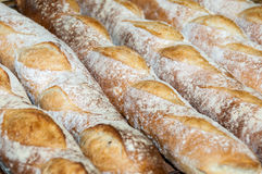 Bread-French baguettes. In bakery Stock Image