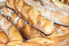 Bread-French baguettes. In bakery Stock Photography