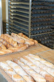 Bread-French baguettes in a bakery. Workshop Royalty Free Stock Image