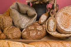 Bread fresh food Stock Image