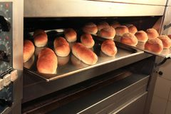 Bread fresh from oven. Photograph of breads fresh from oven Stock Photos