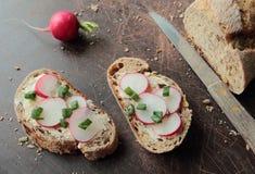 Bread with fresh radish Stock Images