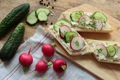 Bread with fresh radish and cucumber. Healthy breakfast. Bread with cheese, radish and cucumber Stock Photography