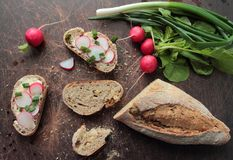 Bread with fresh radish Royalty Free Stock Images
