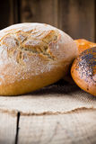 Bread. Royalty Free Stock Image