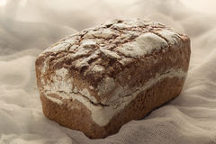 Bread. Freshly baked bread royalty free stock images