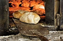 Bread freshly made. Out of a traditional brick oven. This oven work with wood Royalty Free Stock Photo