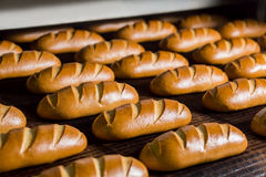 Bread in the furnace. Stock Photography