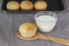 Bread and a glass of milk Royalty Free Stock Photo