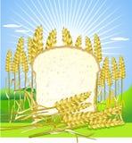 Bread and grain. Bread and bakery symbols vector illustration