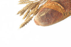 Bread and grain. Close up of the bread and grain on white background Stock Photos