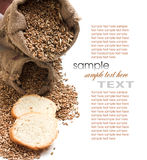 Bread and grain Stock Photography