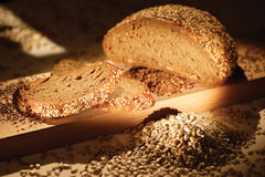Bread and Grain. Composition of slice bread and grain stock photos