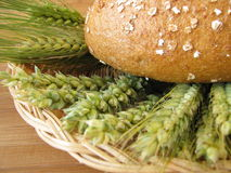 Bread and grains Stock Images