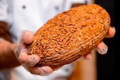Bread in the hands of baker Stock Photo