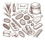 Bread and Ingredients. Big set. Hand drawn vector illustration. Isolated on white background. Vintage style vector illustration