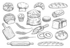 Bread and bun sketch of bakery and pastry food. Bread isolated sketch set of bakery and pastry shop food. Bread, croissant and baguette, bun, cupcake and cake vector illustration