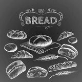 Bread items set isolated illustration on dark grey. Bread items set with inscription above drawn by pencil. Isolated vector illustration of various types of royalty free illustration