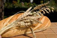 bread life still 免版税库存照片