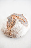 Bread loaf close up in selective focus Royalty Free Stock Image