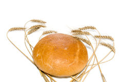 Bread loaf surrounded by wheat spikes, isolated Royalty Free Stock Images