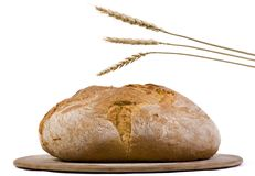 Bread Loaf with wheat isolated 2. A crusted italian loaf of bread on a cooking pan with several stalks of wheat above it Stock Images