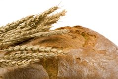 Bread loaf with wheat isolated 3. A close up shot of crusted italian loaf of bread with several stalks of wheat on top Stock Image