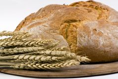 Bread Loaf with wheat on pan 3/4 shot. A crusted loaf of italian bread fresh from the oven with several stalks of wheat beside it Stock Photo