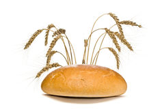 Bread loaf and wheat spikes, isolated Royalty Free Stock Photography