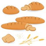 Bread stock illustration