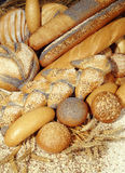 Bread loaves. Diferent kind of baked loaves of bread stock images