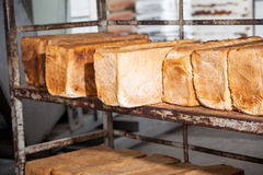 Bread Loaves On Metallic Rack Royalty Free Stock Photo