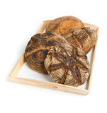 Bread loaves on serving tray. Four different hand-made bread loaves on serving tray isolated on white background stock image