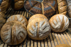 Bread Loaves Stock Photography