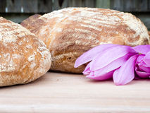 Bread with magnolia flowers Stock Photography