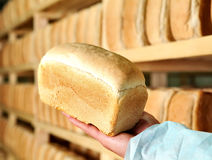 Bread in the man hands Bakery Stocks bread Manufacture of rusks. Royalty Free Stock Images