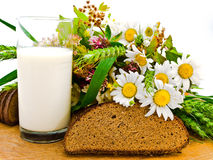 Bread milk and camomile Royalty Free Stock Image
