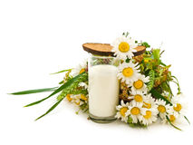 Bread milk and camomile Royalty Free Stock Photos