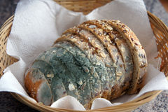 Bread with mold stock images
