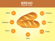 Bread nutrition facts, bread with information, bread vector Royalty Free Stock Image