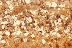 Bread oat flakes and sesame seeds coriander. Stock Images