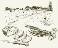Bread and onion. Landscape on the background. Hand drawn illustration stock illustration