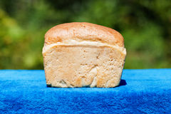 Bread outdoors royalty free stock image