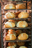 Bread oven Stock Photos