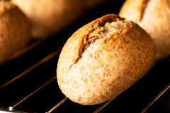 Bread in oven macro Royalty Free Stock Images