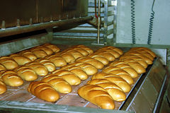 Bread production 4 royalty free stock images