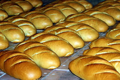 Bread production 5 Royalty Free Stock Photos