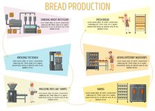 Bread production infographic vector flat style design. Bread production infographics. Vector flat style design illustration. Bread making process from flour vector illustration