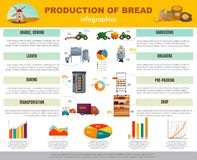 Bread Production Infographics. With information and charts about cereal sowing, harvesting, baking, transportation to shop vector illustration Royalty Free Stock Photography